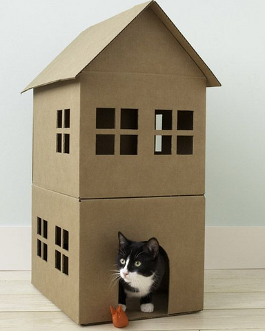 cardboard can DIY Pet House for your cats