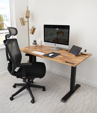 TerraDesk Sustainable Eco-Friendly Sit-Stand Electric Standing Desk with KarmaChair Ergonomic Office Chair