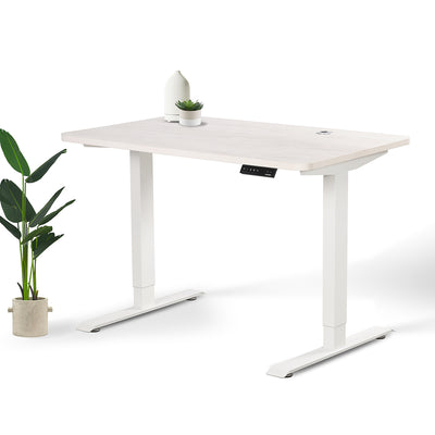 Home Office Sit Stand Desk (Height Adjustable Electric Standing Desk)