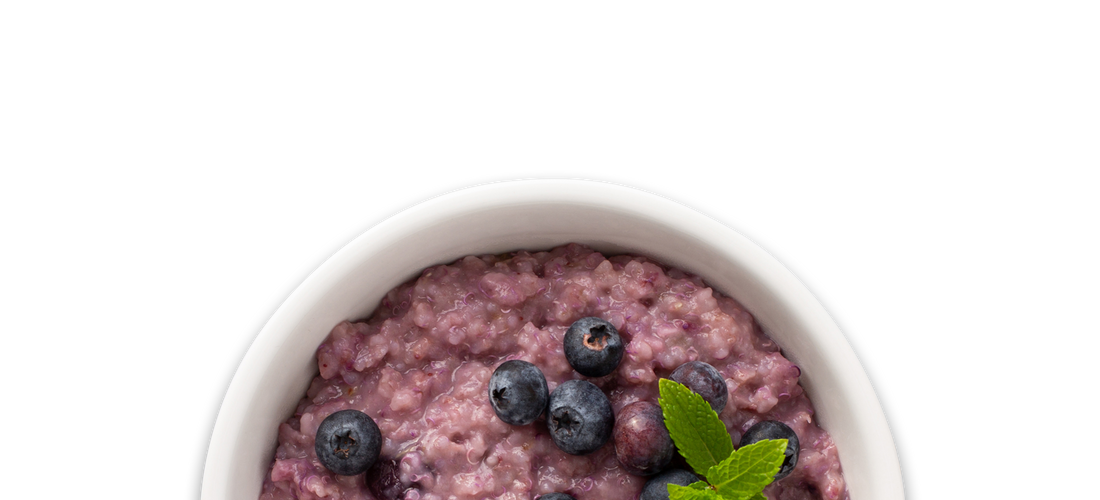 Blueberry Oatmeal & Quinoa
