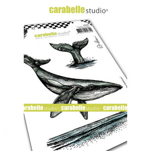 Carabelle cling stamp A6 le chant des baleines --- Walstempel