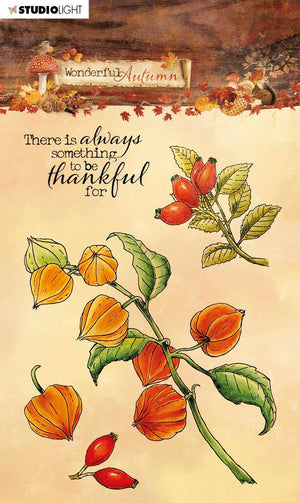 Studio Light • Clear stamp A6 Wonderful autumn nr.481