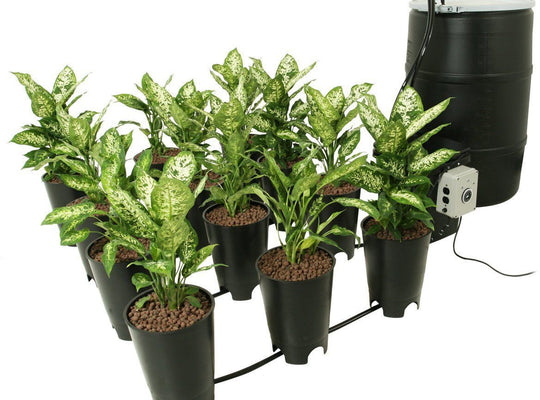 "Active Aqua Grow Flow 2 gal System w/Controller Unit & 1/2"" Tubing Hydroponic Center attached to live plants"
