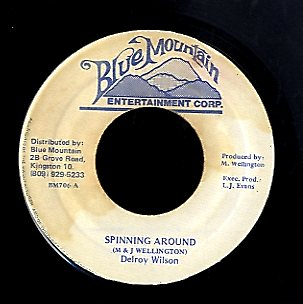 DELROY WILSON [Spinning Around]