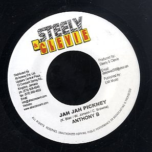 ANTHONY B / FUTURE TROUBLES  [Jah Jah Pickney / Wrong Hail]