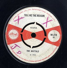 THE MAYTALS [Tell Me The Reason / Wide A Wake Dream]