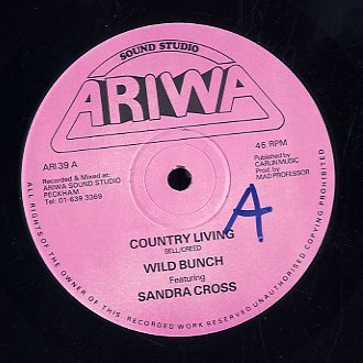 SANDRA CROSS / MAD PROFESSOR & THE ROBOTICS [Country Living / Devil's Play Ground]