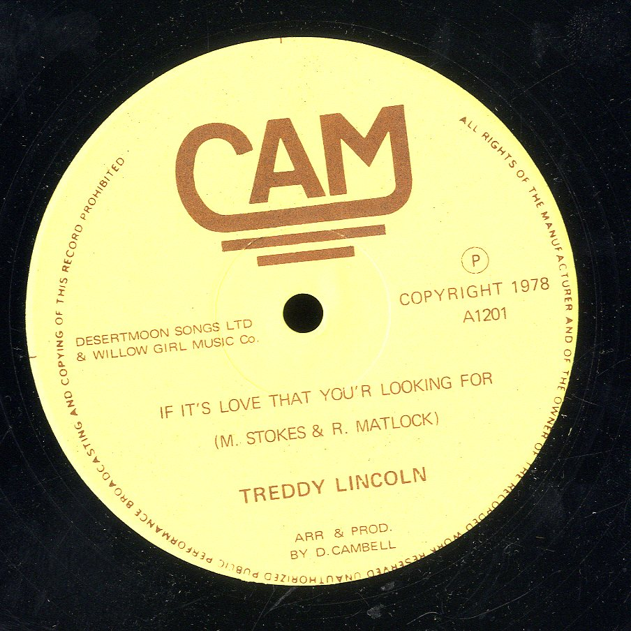 TEDDY LINCOLN [If It's Love That You'r Looking For]