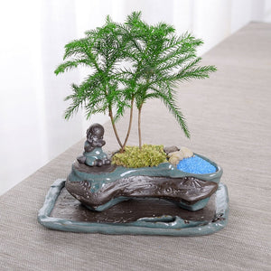 Creative Desktop Zen Style Bonsai