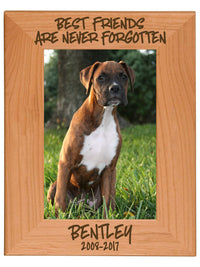 Best Friends Are Never Forgotten - Pet Memorial Personalized Wood Engraved Frame - Sunny Box