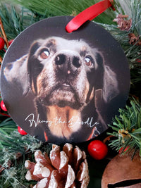 Pet Memorial Ornament - Sunny Box