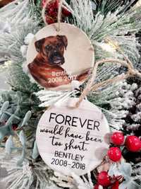 Forever Would Have Been Too Short Pet Memorial Ceramic Ornament