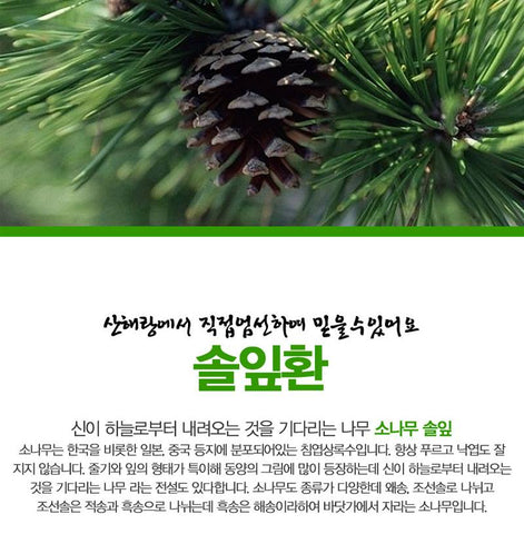 Pine Leaf Pill 300g Made in Korea Health supplements K-foods