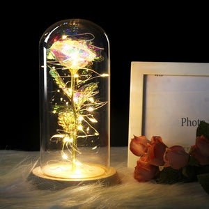 Rose In Glass Dome 2
