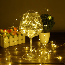 Load image into Gallery viewer, Holidays Christmas & New Year Copper Wire LED String lights