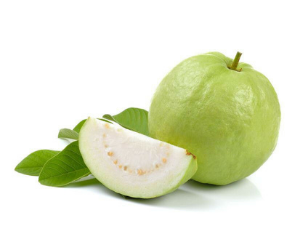 Guava ( White or Thai Guava ) 12 Pounds