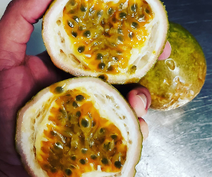 Passion Fruit Case Per 10 Pounds