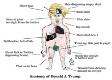 Load image into Gallery viewer, Anatomy of Trump