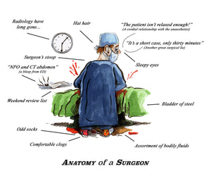 Anatomy of a Surgeon