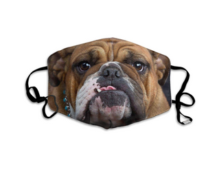 Grumpy Bulldog, with 2 Carbon Pocket Filters-Furbaby Friends Gifts