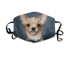 Load image into Gallery viewer, Chihuahua Puppy, with 2 Carbon Pocket Filters-Furbaby Friends Gifts