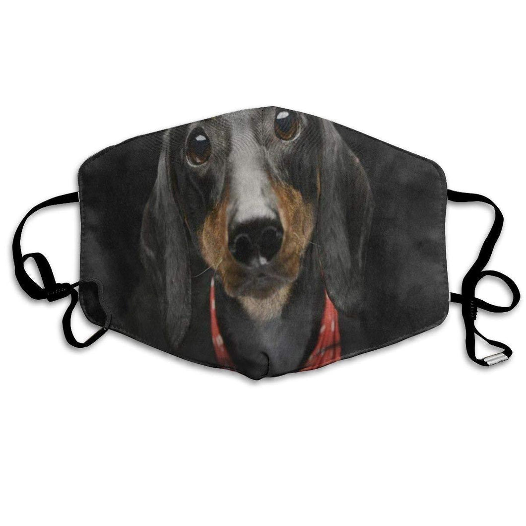 Adorable Dachshund with 2 Carbon Pocket Filters-Furbaby Friends Gifts