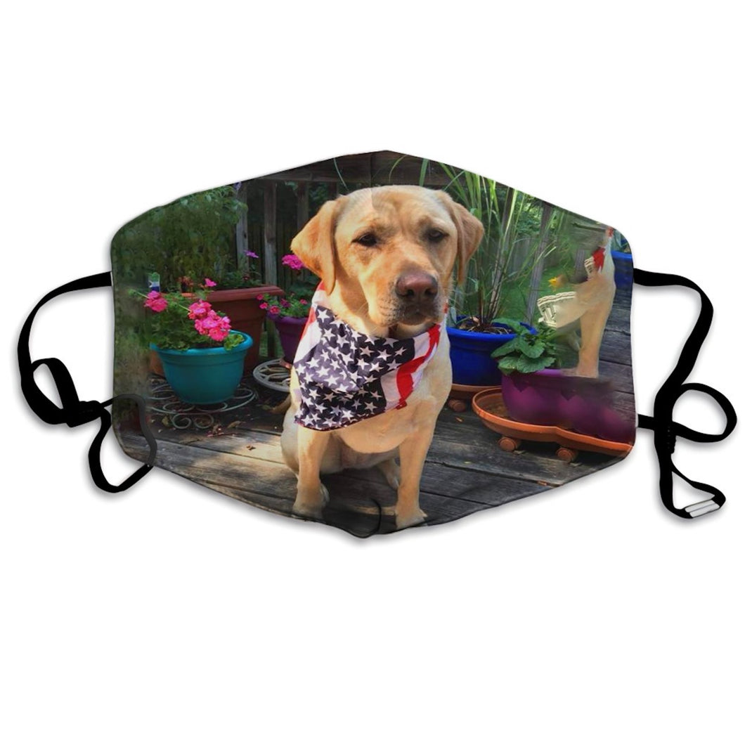 Gorgeous Yellow Labrador, Adjustable Face Mask with 2 Carbon Filters-Furbaby Friends Gifts