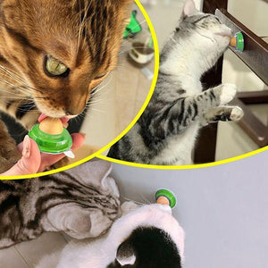 Catnip Licks - Kitty Candy!-Furbaby Friends Gifts