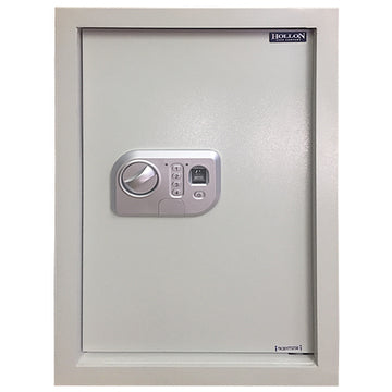 Hollon Wall Safe WS-Bio-1