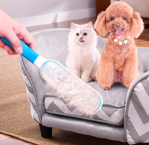 Erase Pet Hairs