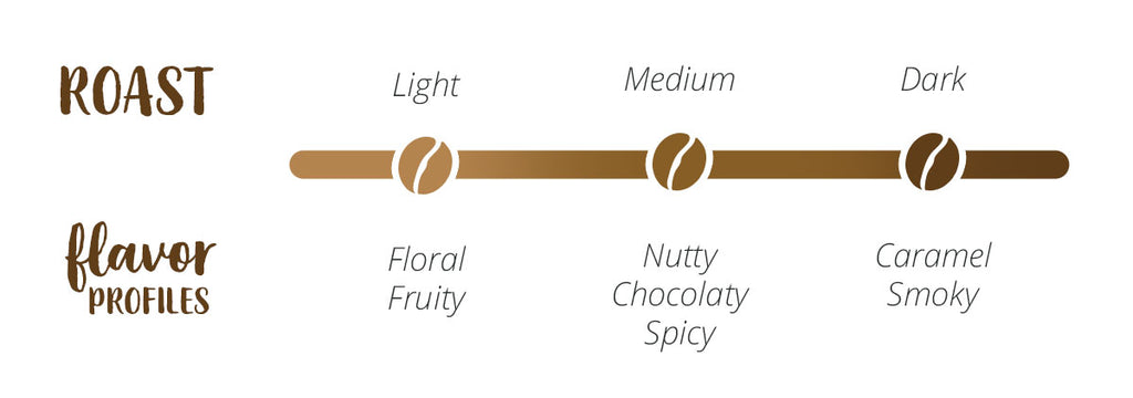 White background and brown font linear graph for different coffee roasts and their respective flavor profiles. Light Roasts may have floral and fruity flavors, Medium Roasts can be Nutty, Chocolaty, or Spicy, and Dark Roasts can have Caramel or Smoky flavors.