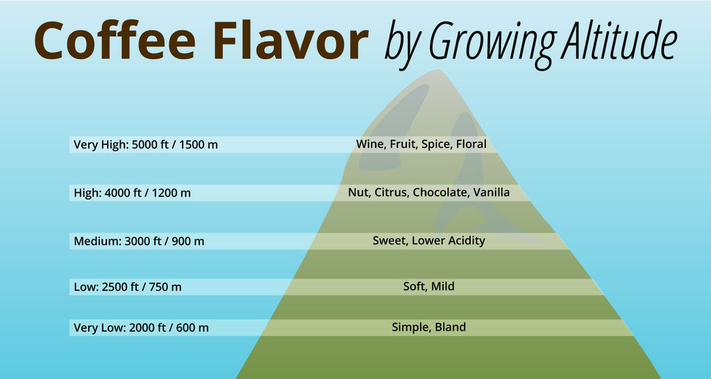 Image of a green mountain with different bars explaining the relationship between Coffee Flavor and Growing Altitude. The list goes like this: Very High: 5000 feet / 1500 meters is Wine, Fruit, Spice, and Floral Flavors. High: 4,000 feet / 1,2000 meters is Nut, Citrus, Chocolate, and Vanilla Flavors. Medium: 3,000 feet / 900 meters is Sweet, and Lower Acidity coffee beans. Low: 2,500 feet / 750 meters is Soft and Mild coffee beans. Very Low: 2,000 feet / 600 meters is Simple and Bland coffee beans.