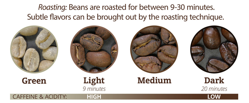 Four circular images of coffee beans, all different types of roasts, and a bar below that indicates their roasting times and Caffeine and Acidity levels. From high to low caffeine and acidity, the beans go Green (Unroasted), Light (which roasts for 9 mins), Medium Roast, and Dark Roast (which roasts for upwards to 20 mins).