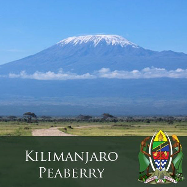 J. Martinez Tanzania Kilimanjaro Peaberry Coffee Base