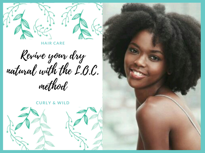HOW TO REVIVE YOUR DRY NATURAL HAIR USING THE L.O.C. METHOD