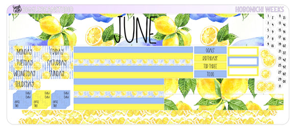 June Monthly Kit - Hobonichi Weeks