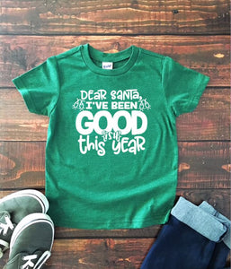 DEAR SANTA...I'VE BEEN GOODish THIS YEAR Youth Holiday T Shirt
