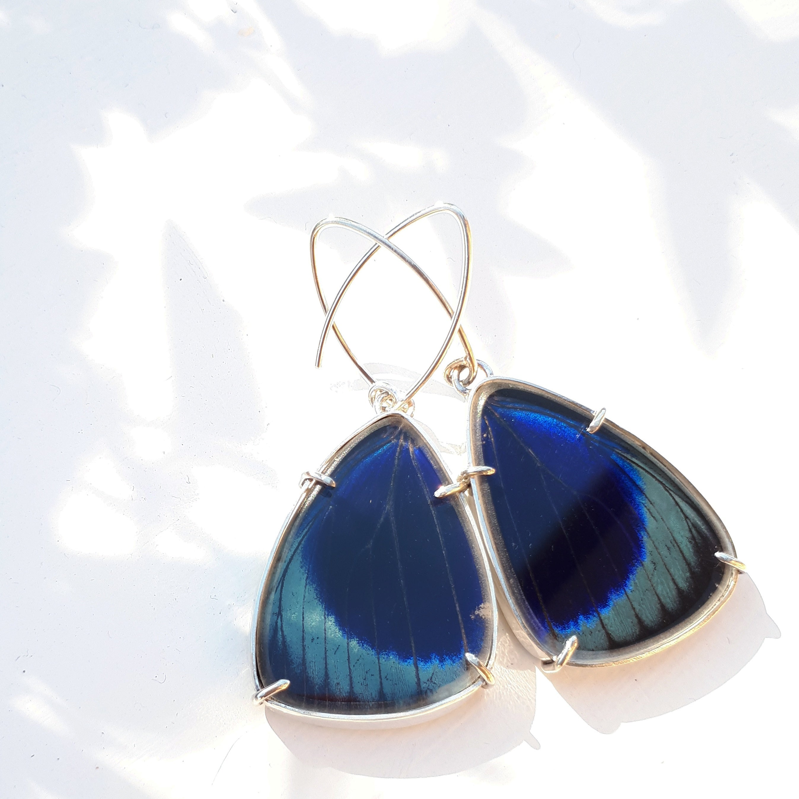 Emily Eliza Arlotte Handcrafted Fine Jewellery Real Butterfly Wing Earrings Asterope leprieuri