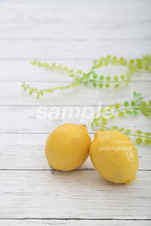 Lemon c0130024PH