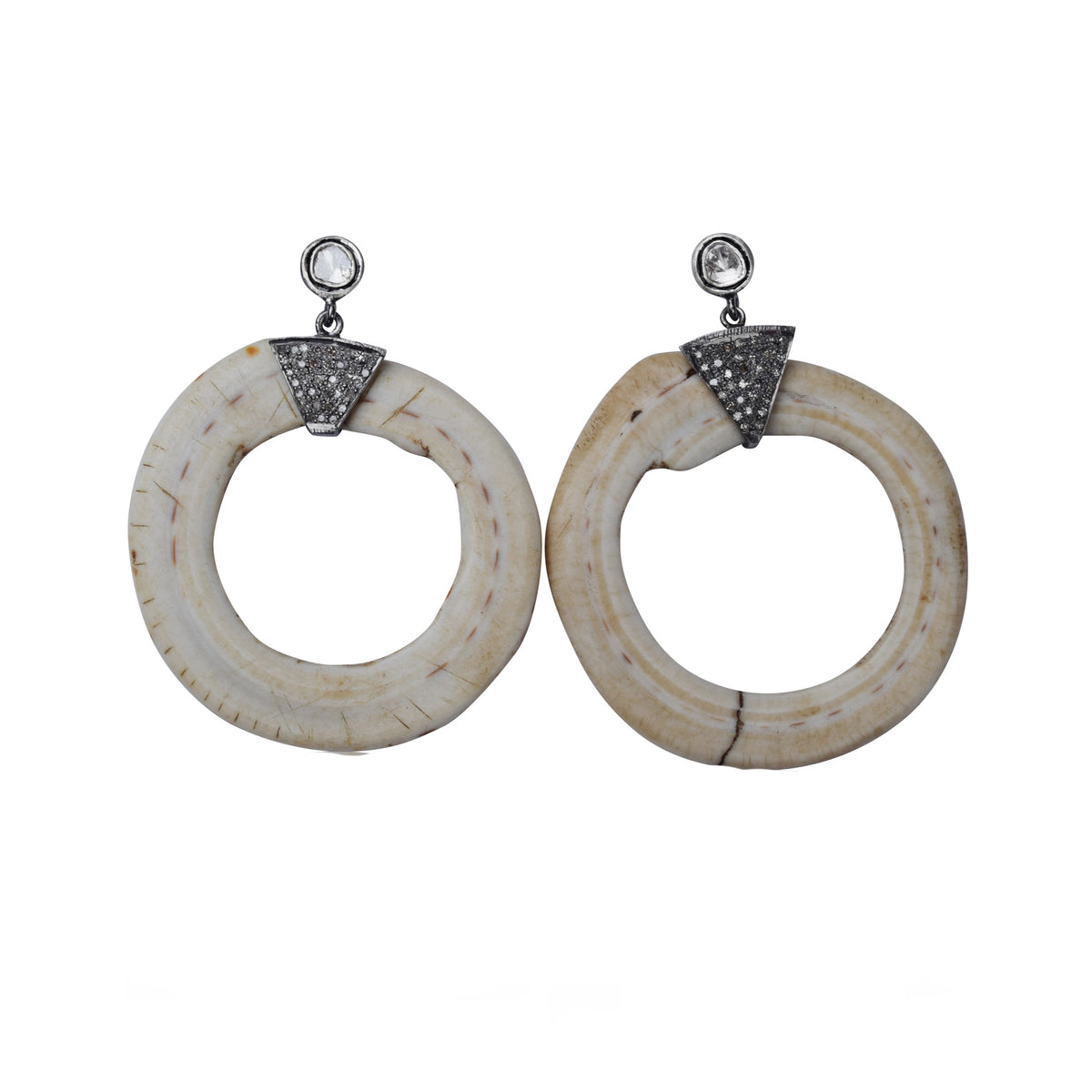 Conus Shell Earrings