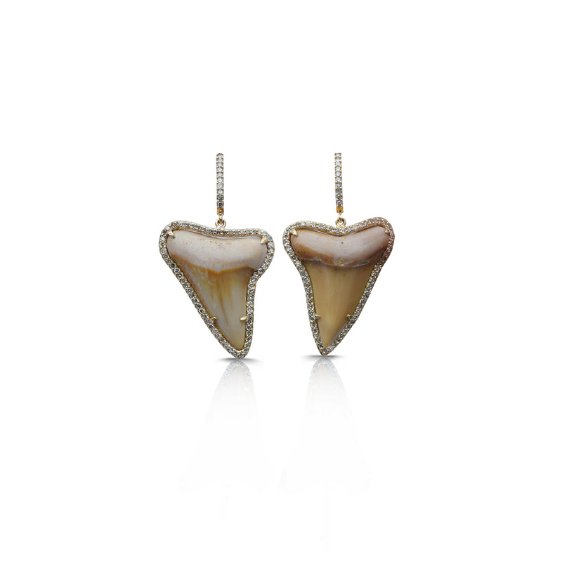 14k Sharks Tooth Earrings