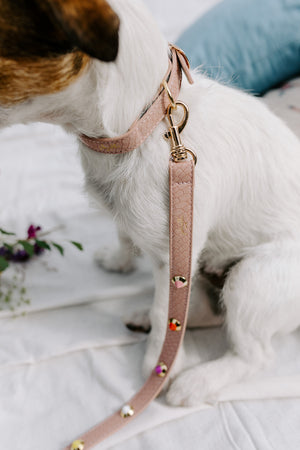 Flora Dog Collar & Leash