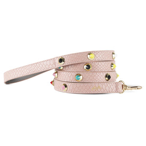 Colorful Dog Leash - Gabriellebyp