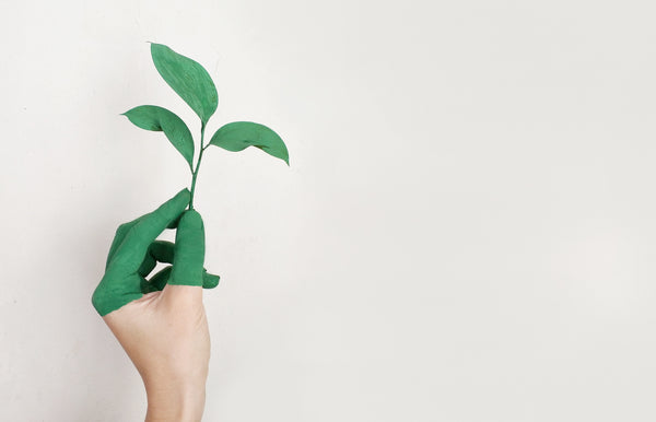 What you need to know about greenwashing | Jajamän Blog
