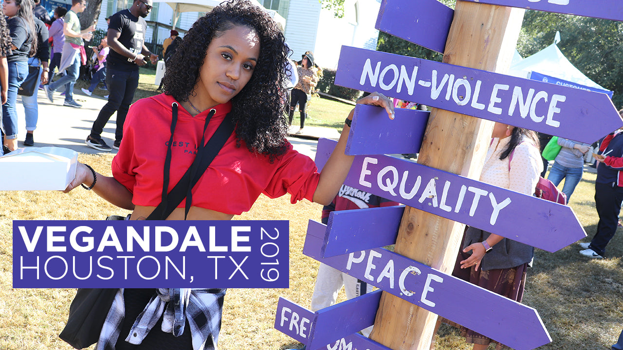 Vegandale Houston 2019