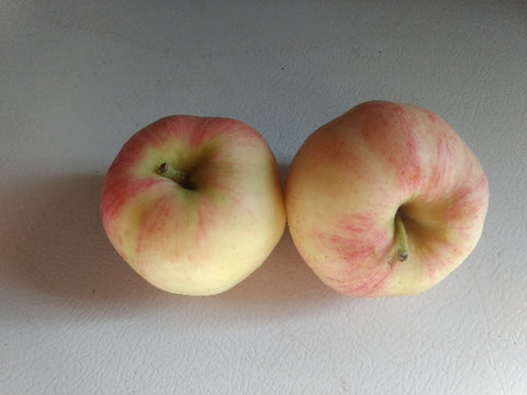 Molly Delicious Apples - 2 lb