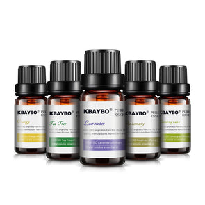 6 Different Types of Essential Oil(10 ml) Diffuser/ Humidifier  Lavender, Tea Tree, Rosemary, Lemongrass, Orangre, peppermint) -  THE EASY LOVE SHOPPE