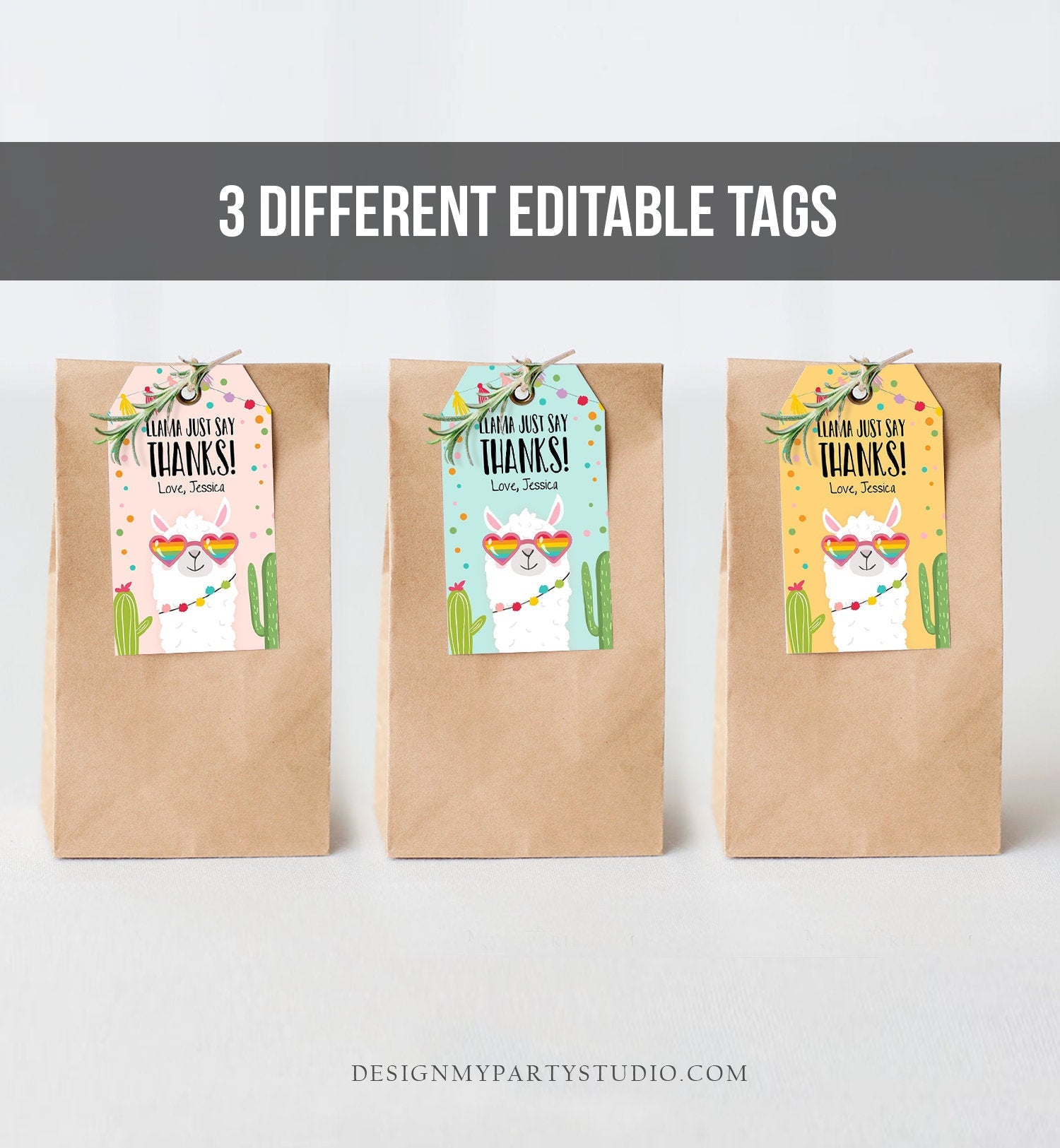 Editable Llama Favor Tags Whole Llama Fun Thank You Tags Llama Birthday Fiesta Mexican Cactus Gift Tag Alpaca Digital Corjl Template 0142