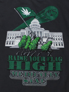 Rais your flag high - Medically Sane
