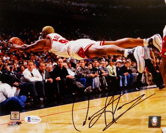 Dennis Rodman Autographed 8x10 Chicago Bulls Diving PF Photo- Beckett Auth *BlK